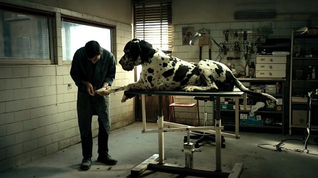 Matteo Garrone in concorso a Cannes con Dogman: guarda il trailer