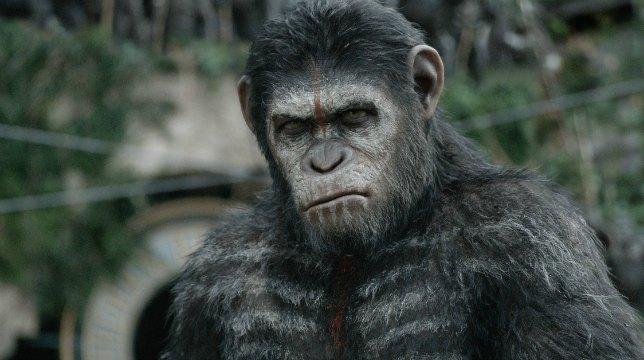 Apes Revolution – Il pianeta delle scimmie: Il film stasera su Italia 1 | Trama e Cast