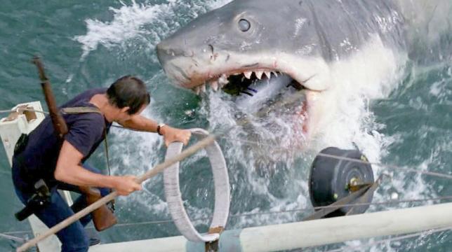 Lo squalo di Steven Spielberg, il film stasera su Rete 4