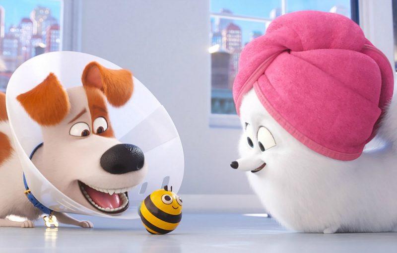 Galleria foto - Pets 2: il sequel animato stasera in prima tv su Sky Cinema Uno Foto 1