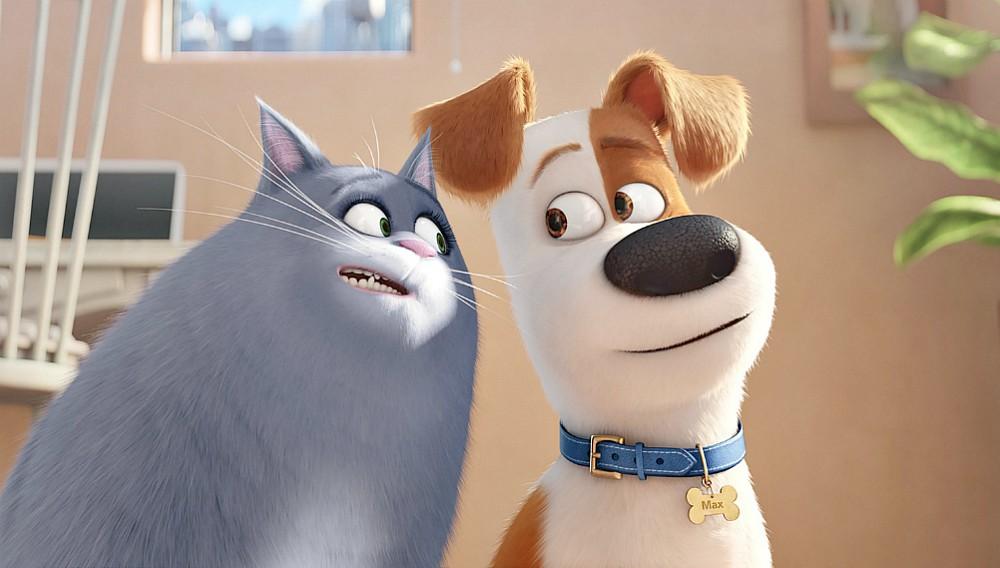 Pets – Vita da animali: il film di animazione stasera su Italia 1
