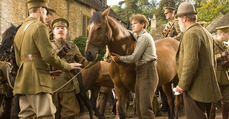 Galleria foto - War Horse: il film di Steven Spielberg stasera su La7 Foto 1